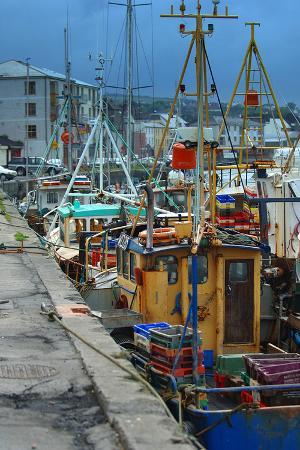 fishermen-in-dock