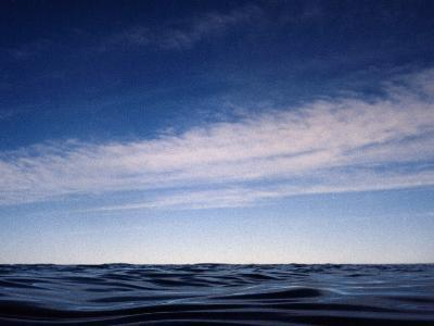 Fishes View of an Inky Pacific Ocean Surface on a Calm Day-Jason Edwards-Photographic Print