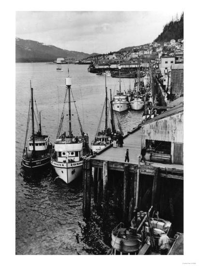 Fishing Boats along shore in Southeastern Alaska Photograph - Alaska-Lantern Press-Art Print
