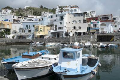 Fishing Boats at Borgo Sant' Angelo, Ischia, Campania, Italy, Europe-Oliviero Olivieri-Photographic Print