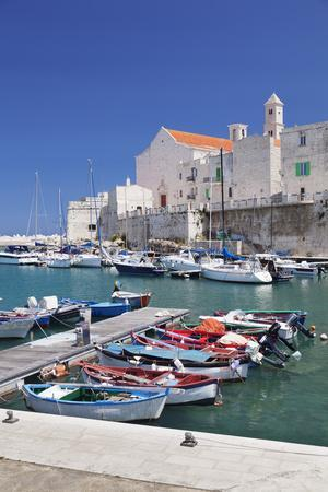 https://imgc.artprintimages.com/img/print/fishing-boats-at-the-harbour-old-town-with-cathedral-giovinazzo-bari-district-puglia_u-l-q12qfnp0.jpg?p=0