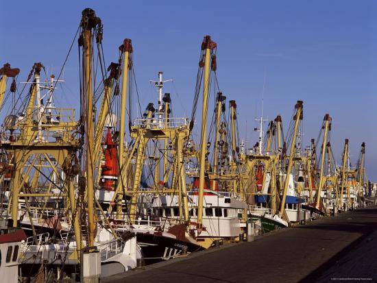 Fishing Fleet, Den Helder, Holland-I Vanderharst-Photographic Print