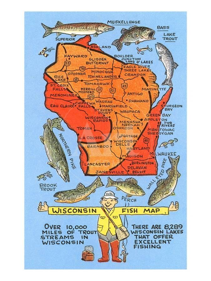 Image result for wisconsin fishing cartoon pics