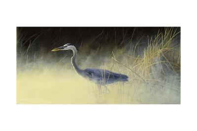 Fishing the Mist-Michael Budden-Giclee Print