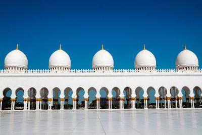 Five Domes of Sheikh Zayed Mosque in Abu Dhabi-In Green-Photographic Print