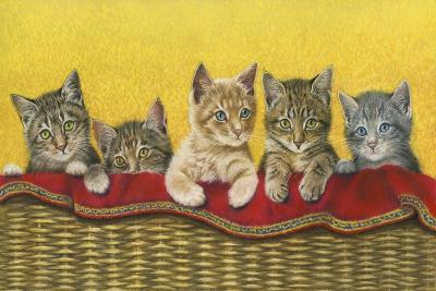 Five Kittens in Basket-Janet Pidoux-Giclee Print