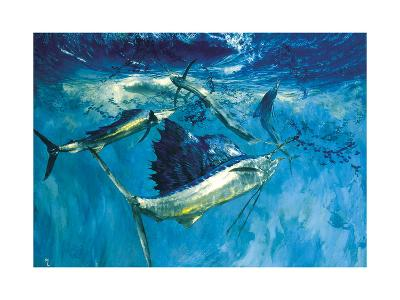 Five Leaping Sailfish: with their Sails Erect Sailfish Herd Bait into a Ball for Easy Pickings-Stanley Meltzoff-Giclee Print