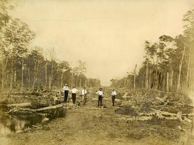 Five Men Stand in the Clearing That Would Become Lincoln Road, March 1905--Photographic Print
