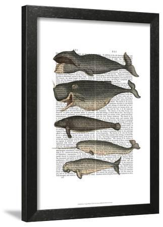 Five Vintage Whales-Fab Funky-Framed Art Print