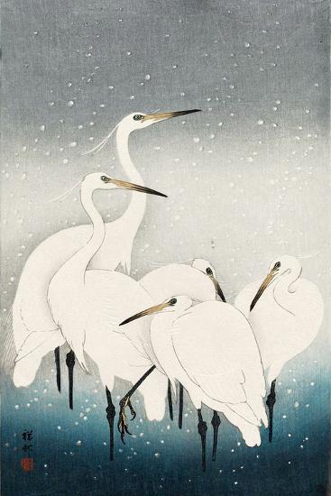 Five White Herons Standing in Water; Snow Falling-Koson Ohara-Giclee Print