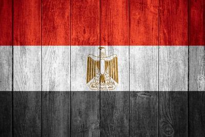 https://imgc.artprintimages.com/img/print/flag-of-egypt_u-l-pn385z0.jpg?p=0