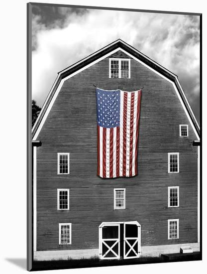 Flags of Our Farmers XIX-James McLoughlin-Mounted Photographic Print