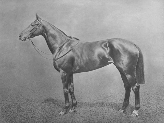 'Flair', 1911-Unknown-Giclee Print