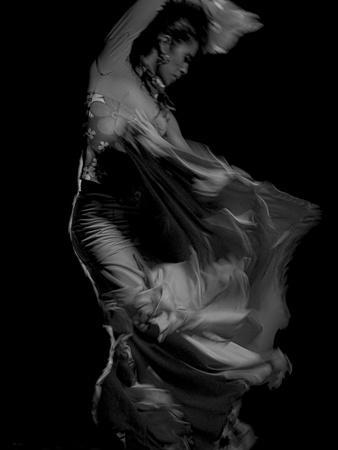https://imgc.artprintimages.com/img/print/flamenco_u-l-pz0uz00.jpg?p=0