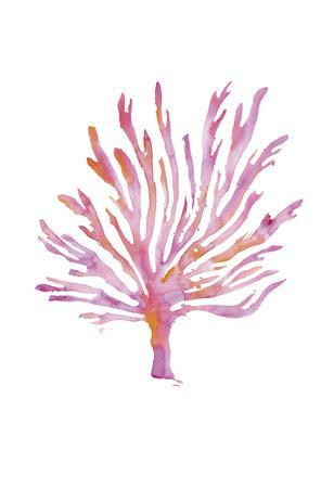 https://imgc.artprintimages.com/img/print/flaming-tree_u-l-f8dz7v0.jpg?p=0