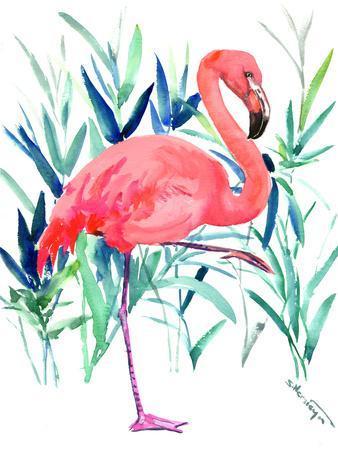 https://imgc.artprintimages.com/img/print/flamingo-2_u-l-f99a0o0.jpg?p=0