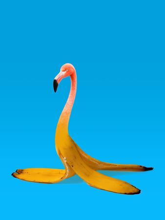https://imgc.artprintimages.com/img/print/flamingo-banana_u-l-f94dom0.jpg?p=0