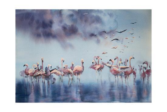Flamingo Gathering-Sophia Rodionov-Art Print
