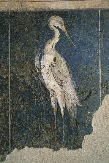 Flamingo in a Swamp from the House of Love and Pan--Giclee Print
