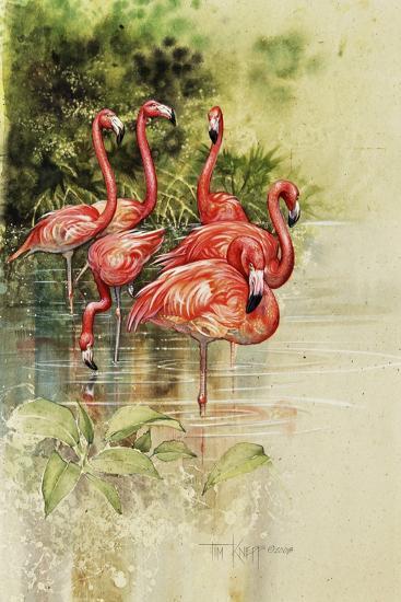 Flamingo Paper-Tim Knepp-Giclee Print