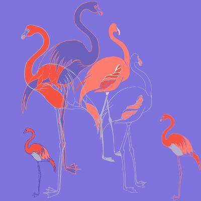 Flamingoes-Anna Platts-Giclee Print
