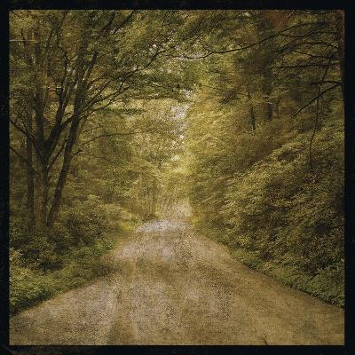 Flannery Fork Road No. 1-John W Golden-Giclee Print