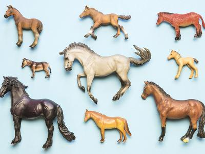 Flat Lay View of Neatly Arranged Plastic Horse Toys- pirke-Photographic Print
