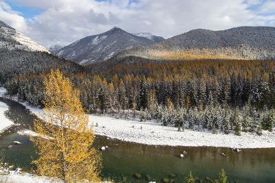Flathead River in Fall Colors, Glacier National Park, Montana, USA-Chuck Haney-Photographic Print