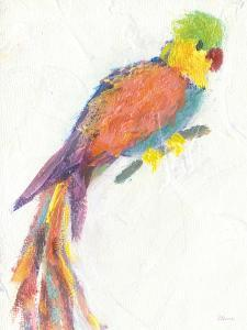 Parrot Extraordinaire by Flavia Weedn