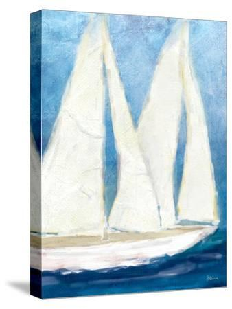 The Sailboat Cruise