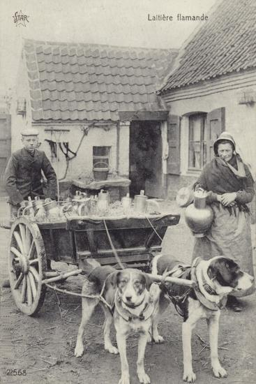 Flemish Milkmaid and Mobile Dairy--Photographic Print