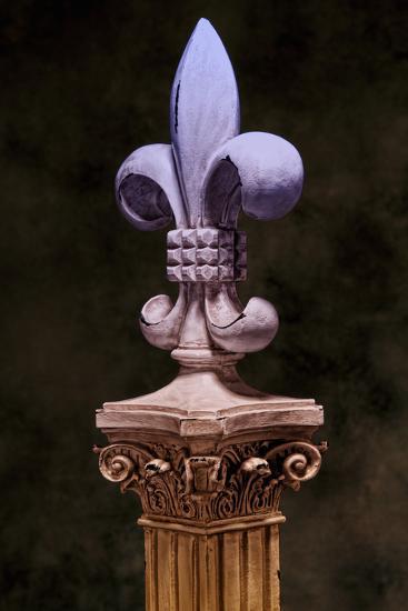 Fleur de Lis III-C^ McNemar-Photographic Print