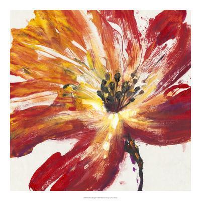 https://imgc.artprintimages.com/img/print/fleur-rouge-ii_u-l-f8swo00.jpg?p=0