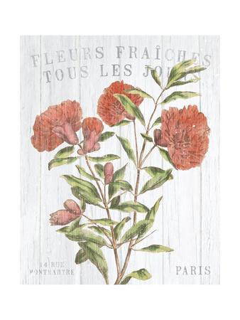 https://imgc.artprintimages.com/img/print/fleuriste-paris-iii_u-l-q1bvhi90.jpg?p=0