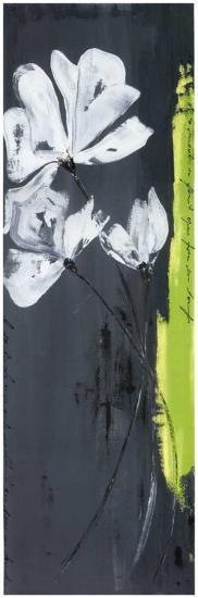 Fleurs Blanches et Frise Verte I-Marielle Paccard-Art Print