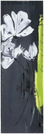 https://imgc.artprintimages.com/img/print/fleurs-blanches-et-frise-verte-i_u-l-f4eqbj0.jpg?p=0