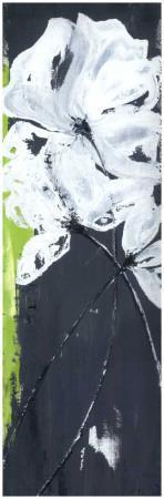 https://imgc.artprintimages.com/img/print/fleurs-blanches-et-frise-verte-ii_u-l-f4eqbk0.jpg?p=0