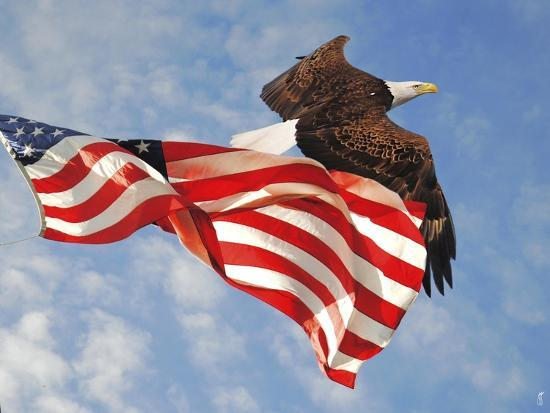 Flight of Freedom Bald Eagle-Jai Johnson-Giclee Print