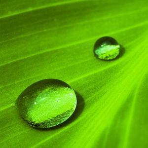 Water drops II by Fline