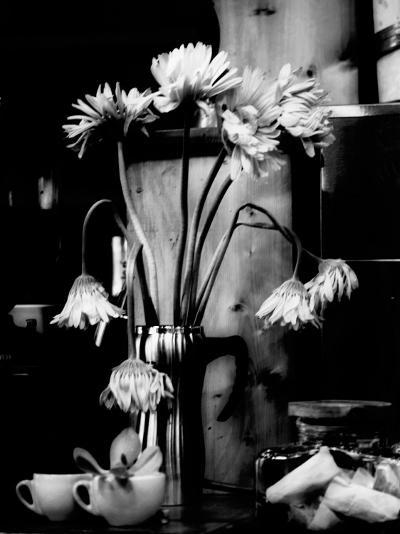 Fliptune-Sharon Wish-Photographic Print