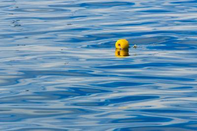 https://imgc.artprintimages.com/img/print/floating-buoy-in-the-ocean-van-dyks-bay-western-cape-province-south-africa_u-l-q1ganqm0.jpg?p=0