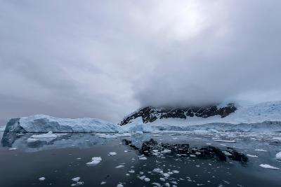 Floating Ice Mountains and Coastline Neko Harbour Antarctic Peninsula Antarctica-Renato Granieri-Photographic Print