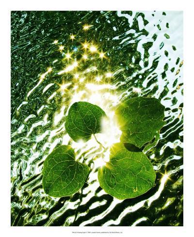 Floating Light-Leonard Morris-Giclee Print