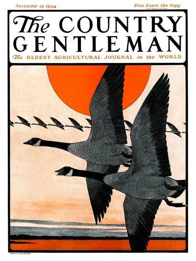 """""""Flock of Geese in Formation,"""" Country Gentleman Cover, November 15, 1924-Paul Bransom-Giclee Print"""