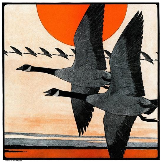 """""""Flock of Geese in Formation,""""November 15, 1924-Paul Bransom-Giclee Print"""