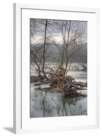 Flood Debris in the Potomac River Inside the Beltway-Irene Owsley-Framed Photographic Print