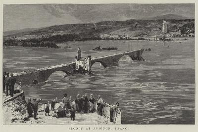 Floods at Avignon, France--Giclee Print