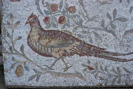 Floor mosaic from a Roman villa-Unknown-Giclee Print