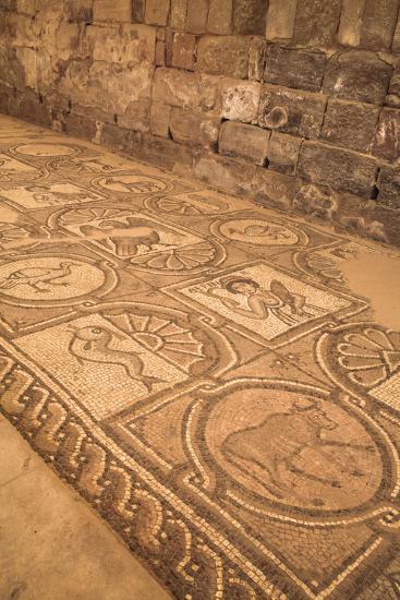 Floor Mosaics, Petra Church (Byzantine Church), Built Between the 5th and 7th Centuries Ad-Richard Maschmeyer-Photographic Print