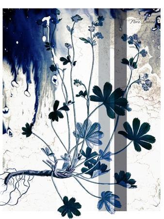 Blue Flower 02 by Flora Danica